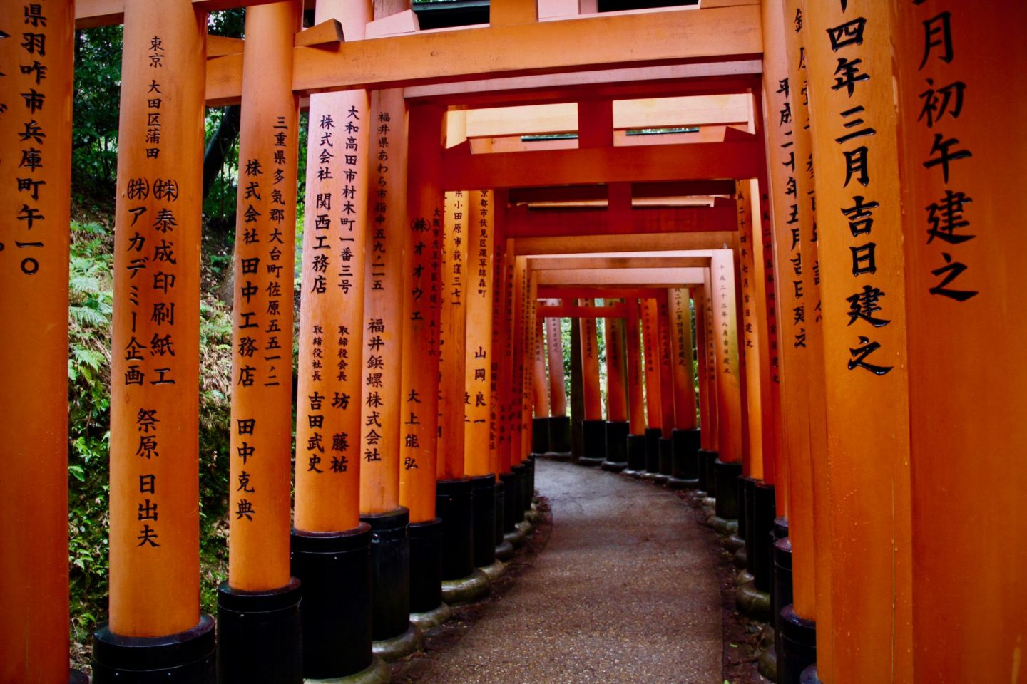 Fushimi Inari Shrine Tori Gates Kyoto, Japan - The Spectacular Adventurer