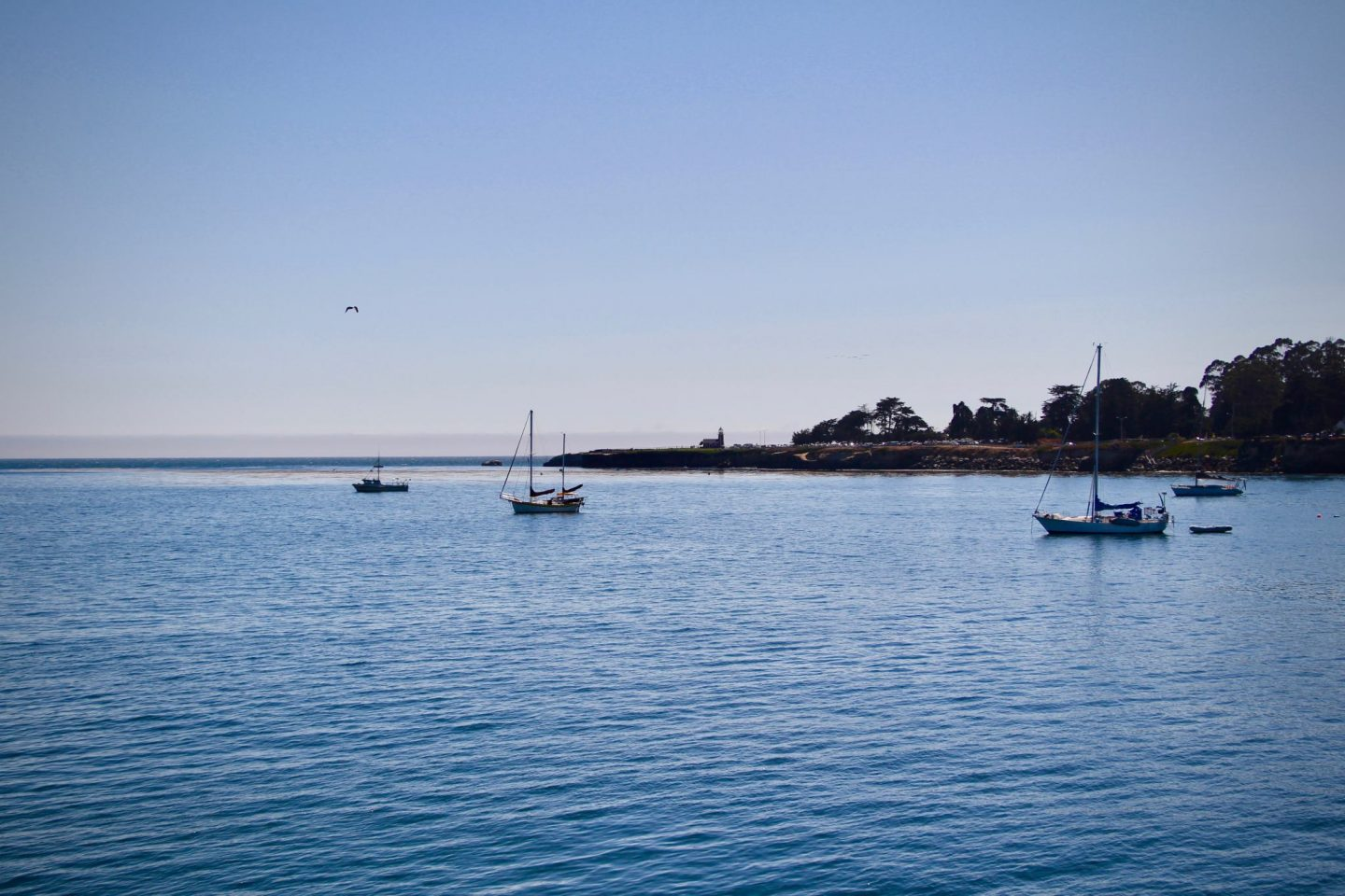 Santa Cruz Harbor at sunset, Santa Cruz, California - The Spectacular Adventurer