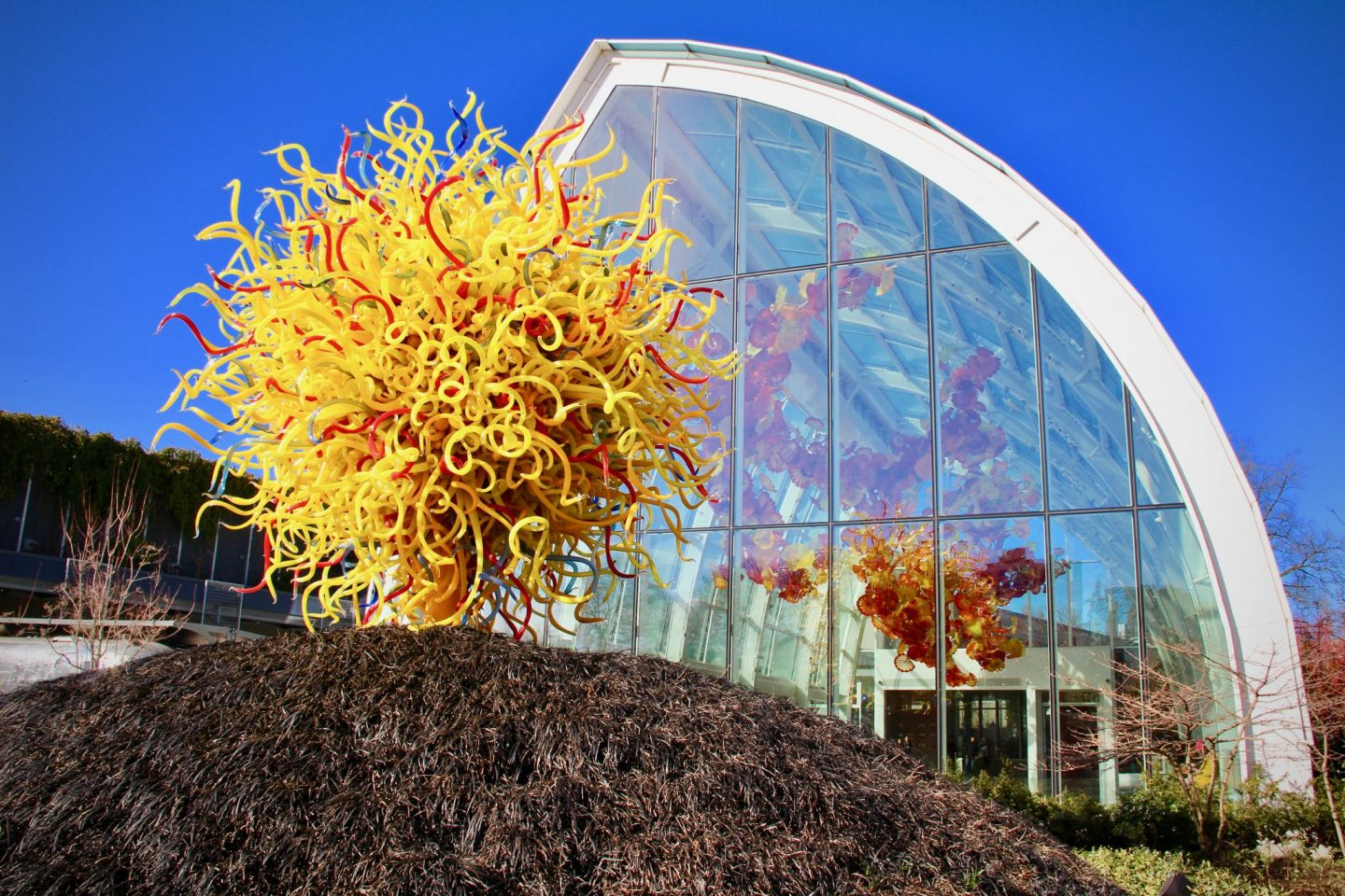 Chihuly Glass Museum, Seattle, Washington ... 24 hours in Seattle, WA ... The Spectacular Adventurer
