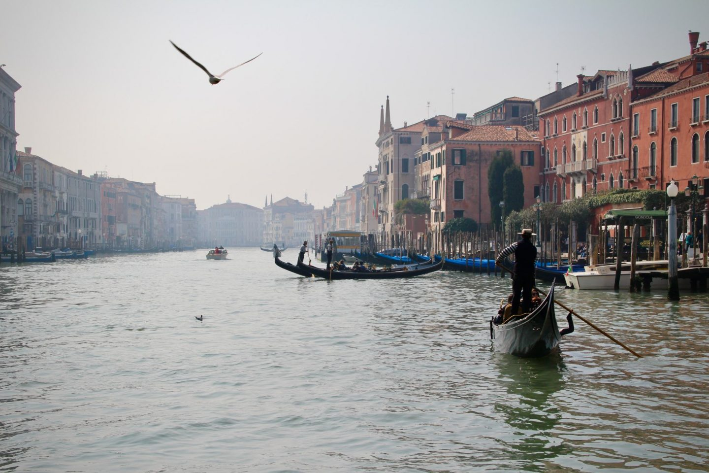 Venice Grand Canal Gondola Ride - The Spectacular Adventurer