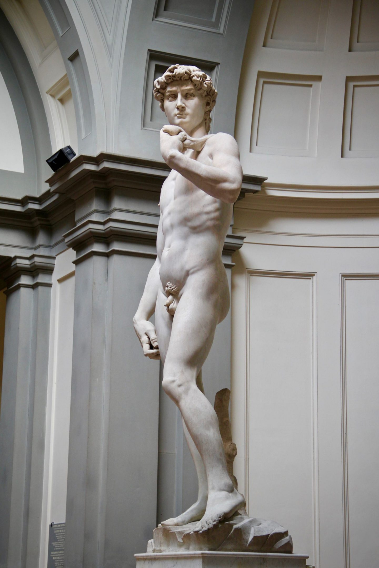 The David 24 Hours Florence ... The Spectacular Adventurer