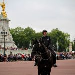 Changing of the Guard ... 24 hours in Buckingham Palace ... The Spectacular Adventurer